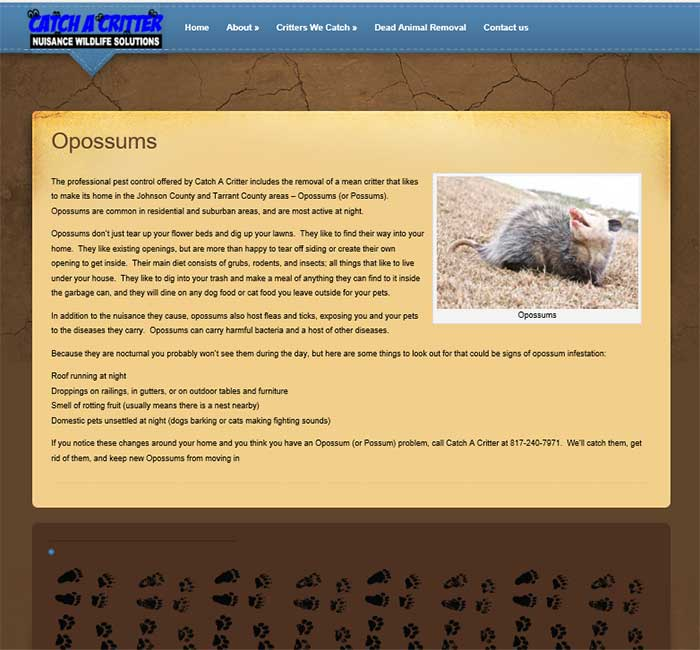 fort-worth-wordpress-websites-critter-2