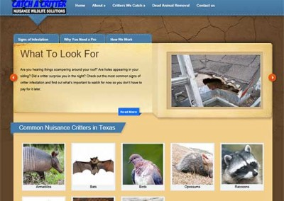 WordPress Website:  Catch a Critter