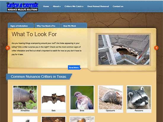 WordPress Website:  Catch a Critter