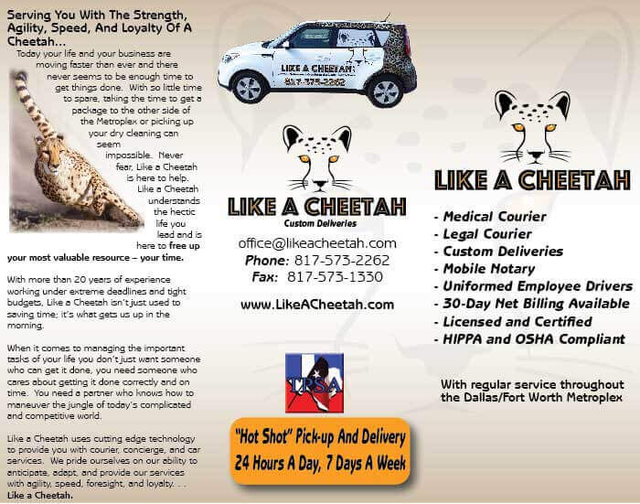 small-business-marketing-cheetah-1